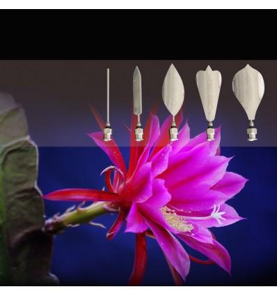 Set de 5 Gubias, agujas para gelatina artística floral