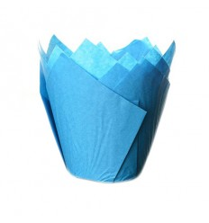 Tulipas Azules 24 UD